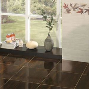 Brown Gloss Ceramic Floor Tiles