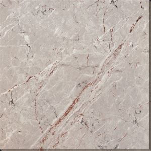 24x24 Bathroom Porcelain Floor Tile